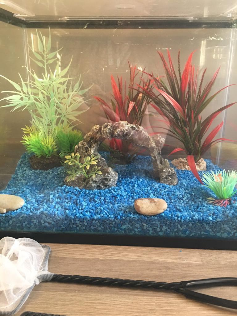 Fish tank feeder - Fish Tank Ornaments Stones Pump Feeder Tank Net Fish