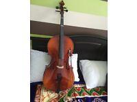1/2 (Half size cello)