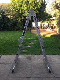 Youngman 4 way ladder