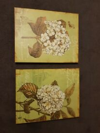 2 flower pictures on canvas