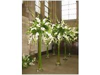 17 Pcs 80 cm Tall clear Oasis Lily Vase