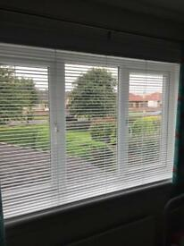 Venetian Gloss White Blind