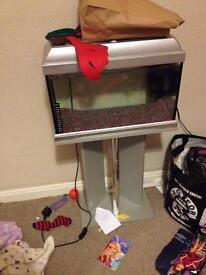 4lt fish tank