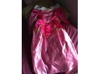 Disney Sleeping Beauty dressing up dress