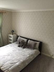 Large double room/single room to rent