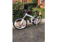 Electric Mountain Bike Cycle - 600w Motor 30AH Battery - Light Use