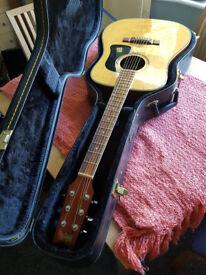 Washburn D10S Acoustic