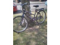 Raleigh ladies bicyle with luggage carrier