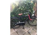 Dutch bike (Popal)