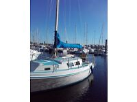 Seamaster Sailer 23 sailing yacht great condition Many extras