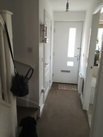 Room to rent in SA1