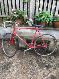 Men's red Carlton racer bike -for sale