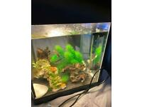 30 litre fish tank with heater and pump. realistic offer may be accepted - need gone ASAP