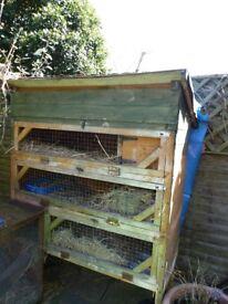3 tier hutch for small animals