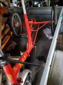 PASHLEY Tri 1 3 wheeler folding bike