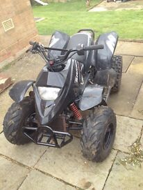 Quadzilla proshark 100cc water cooled