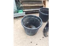 Large black plastic garden pota