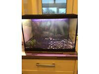 🌟🌟🌟🌟🌟 SUPERFISH 70L Fish Tank