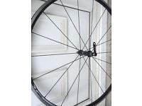 Giant PLS front racing bike wheel