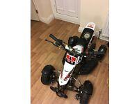 Mini quad for sale
