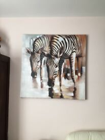 Zebra canvas x2
