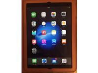 Apple iPad Air 2 Wifi 64GB + case