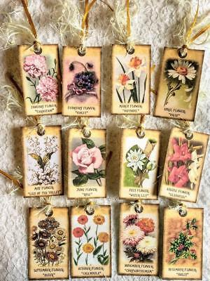 Set of 12 Hang Tags~Flower of the Month~Gift Tags~Scrapbooking~Card Making~#110R