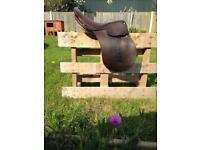 "16.5"" pony show saddle"