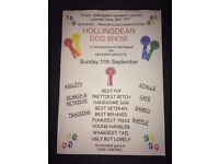 Hollingdean Dog show