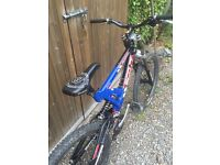 Scott Octane DH full sus Mountain bike and setup