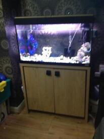 Fish tank with wooden cabinet fluval!