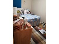 NICE SINGLE ROOM IN A PEACEFUL AND CLEAN FLATSHARE JUST FEW MINUTES TO CANARY WHARF. NO AGENCY FEES
