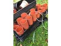 Free plants nursery pots