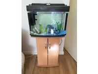 60ltr aquarium and stand