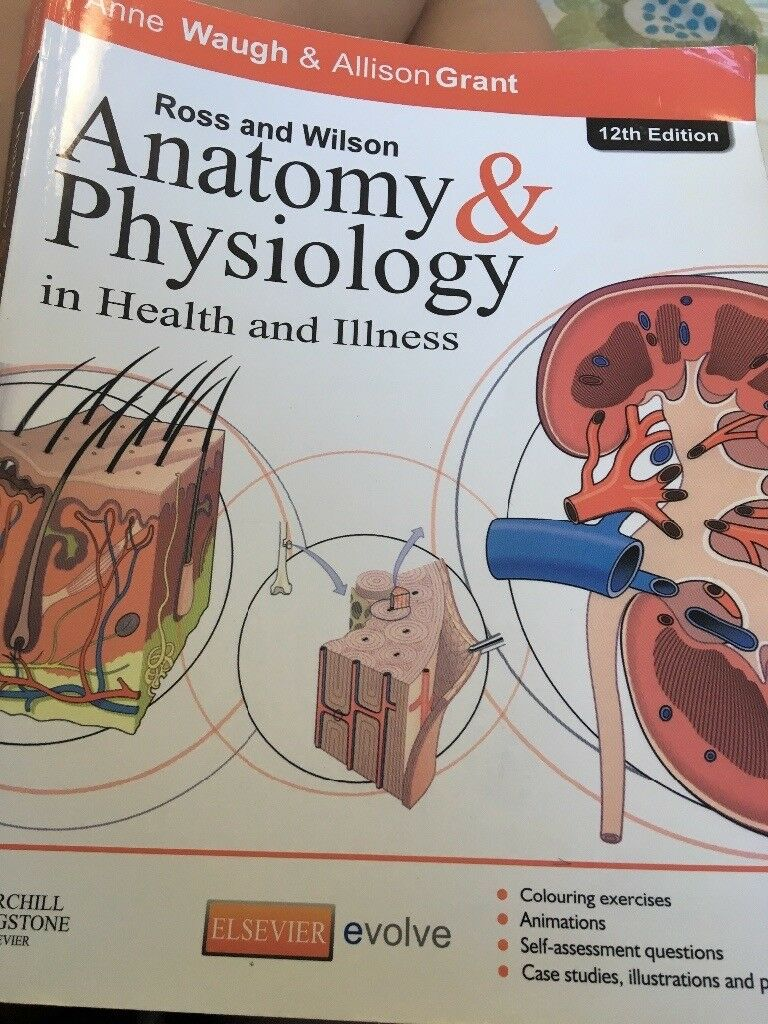 Beautiful Anatomy And Physiology Ross And Wilson 11th Edition Model ...