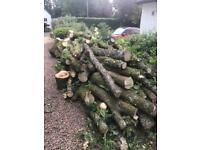 Wood/Logs