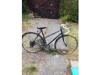 Family bikes for sale