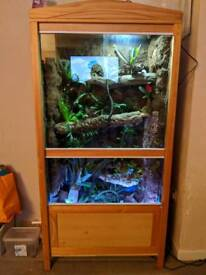Huge custom build vivarium