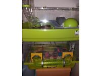 Four female mice needing a home due to moving ,very friendly,free to good home,in two seperate cages