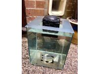 Used Fluval Chi 19L aquarium fish tank GLASS