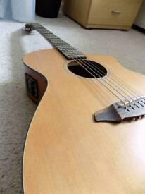 Breedlove C250/COe electro acoustic