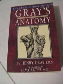 Grays Anatomy Paperback Edition