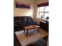 Nice Comfortable Serviced Apartment, Close to City Centre, Free SKY Plus & WiFi