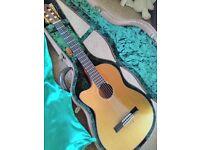 Hudson Classical Guitar (Left Handed) with Hudson Hard Case