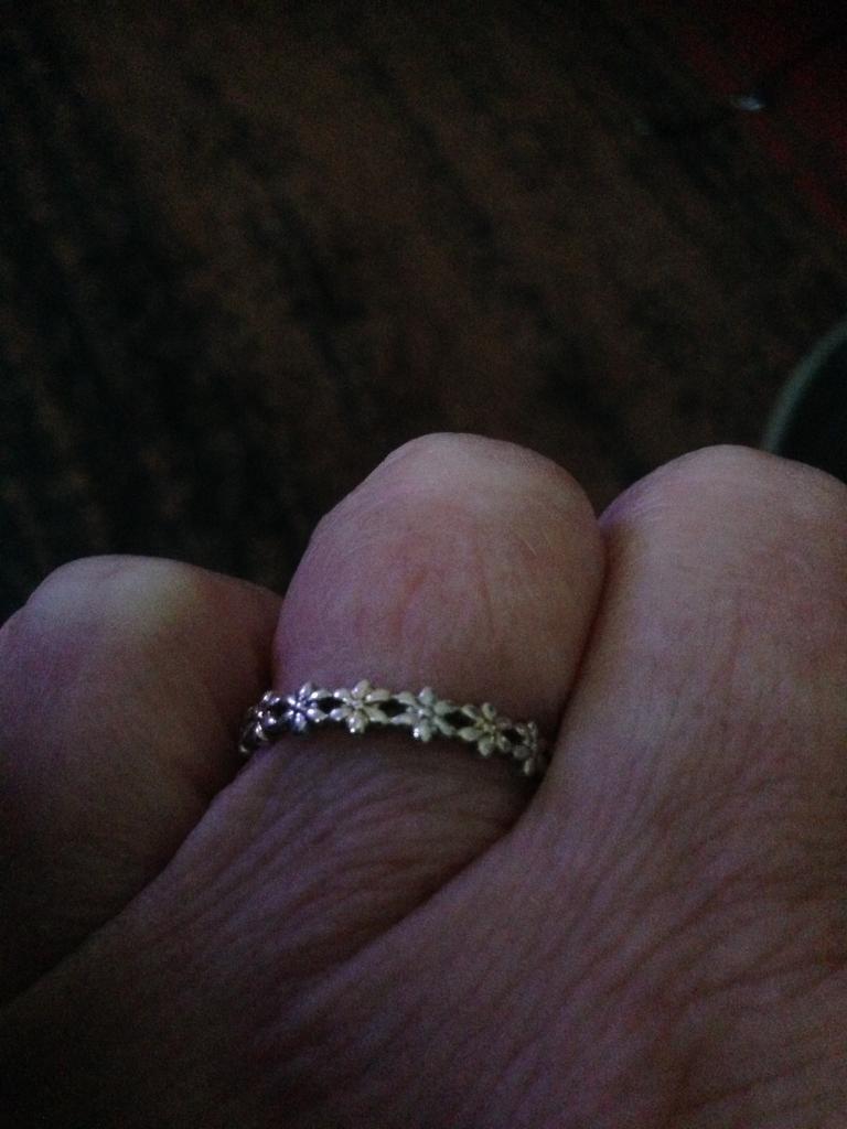 Silver rings x2