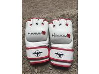 MMA Gloves (Hayabusa)