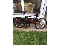 Bike - Dunlop Velicity Sport (6 Gears)