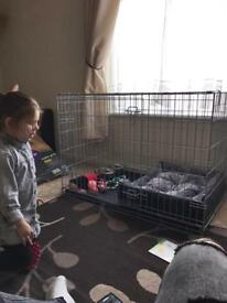 Large dog crate bed and accessories