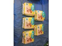 5 x 24 packs of Pampers micro size disposable nappies