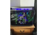 Fish tank 90 ltr with remote led lighting
